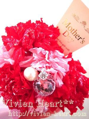 Vivien Heart** ~ヴィヴィアンハート~-カーネーション2