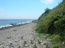 microcosmos B-池島45