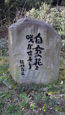 のんべえ社長の情熱の叫び!-DVC00344.jpg
