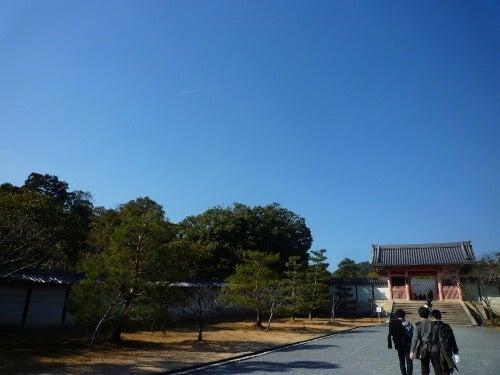 酒リーマンのフードライフat京都-仁和寺