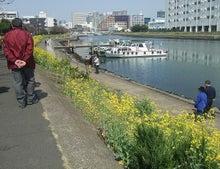 ワークライフバランス 大田区の女性社長日記-菜の花