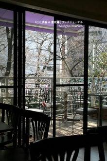 ●[渋谷&恵比寿] ランチ・ジャーナル-36