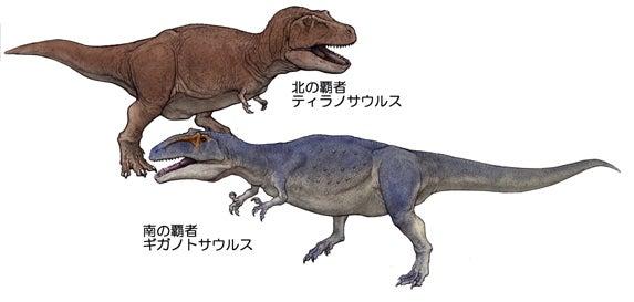 川崎悟司 オフィシャルブログ 古世界の住人 Powered by Ameba-ティラノサウルスとギガノトサウルス