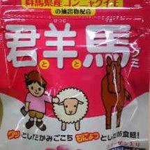君と羊と馬グミ