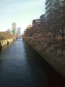 ★ラーメン占い blog★-100327_1447~01.jpg