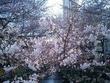渋谷で働く女社長の日記-.........