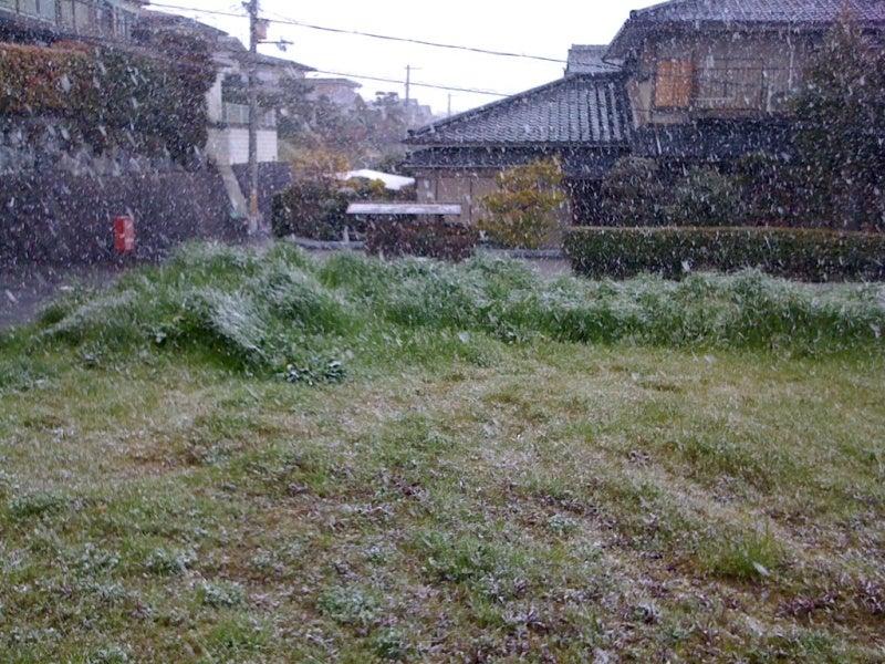 おまけ道@琵琶湖畔で実家生活♪-100329