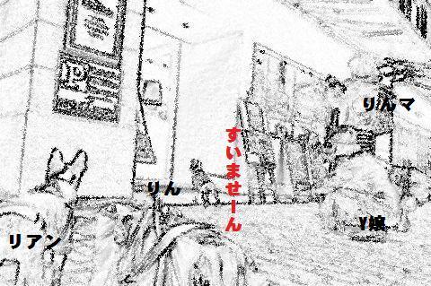 ボストンテリア 全身黒タイツのリアンさん-修学旅行@名古屋