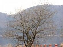 滋賀県 余呉町商工会  「余呉湖と天女の羽衣伝説の街」