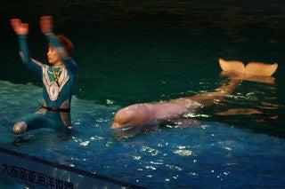 中国大連生活・観光旅行通信**-大連 水族館