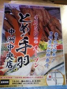 中洲観察係のブログ-とめ手羽3