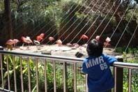 三度目で結(ユウ)-のいち動物公園