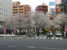 東京でプチスローライフ-駅前の桜