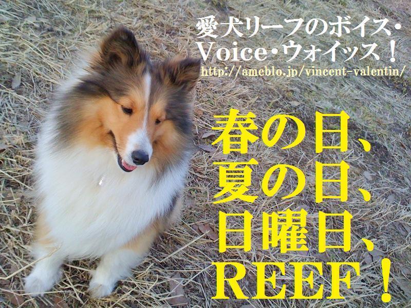 愛犬リーフのボイス、VOICE、ウォイッス!-サブ画面