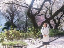 ワークライフバランス 大田区の女性社長日記-桜2