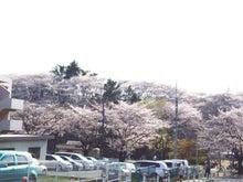 セーフティーハウスの川崎市高津区近隣の不動産情報-梶ヶ谷第一公園