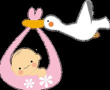 Sweet Angel-コウノトリ 赤ちゃん