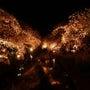 五条川の夜桜画像20…