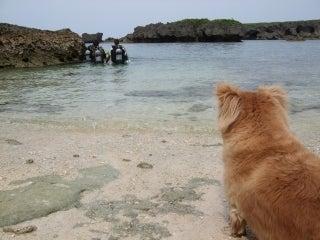 島海空(すまんかいくぅ)航海日誌