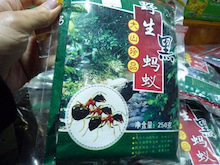 かなの香港ノート
