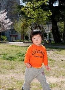 Grumpy Monkey(不機嫌なおさるさん)の観察日記-hanami2010 mini 2