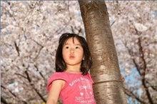 Grumpy Monkey(不機嫌なおさるさん)の観察日記-hanami2010