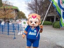 シフクノトキ-タヌキ
