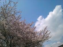 かっちゃんの日記-SN3L0069.jpg