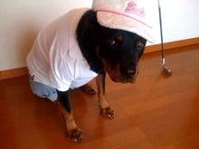 $fruit dog family   -photo001200010001.jpg