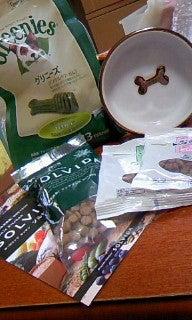 祇園の住人 お水編-100422_1233~010001.jpg