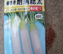 アキステの野菜料理-ダイコン4
