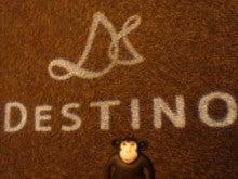 ディスティーノ ウェディングスタッフのブログ