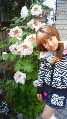 じっくりコトコトのブログ-NEC_0901.jpg