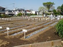 早期リタイア生活(準備編)-farm