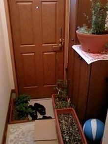 とろとろひとりごと-玄関