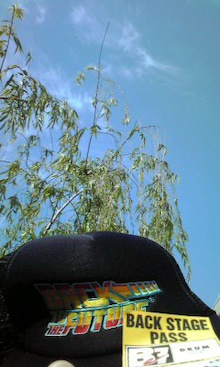 太陽族花男のオフィシャルブログ「太陽族★花男のはなたれ日記」powered byアメブロ-100427_1645~001.jpg