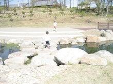 Chipapa の備忘録-石渡り