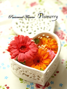 Plumerry(プルメリー)プリザーブドフラワースクール (千葉・浦安校)-ギフトアレンジ ガーベラ
