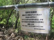 ぽれぽれカエルが雨に鳴く-inuto03