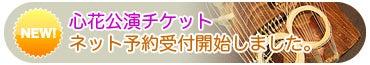 心花 kokohana:二十五絃筝ユニット 「ここはな日記」