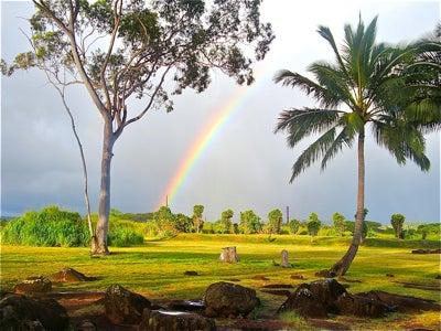 心とカラダが元気になる...   「楽園サプリ」 by Moe Hawaii-クカニロコと虹