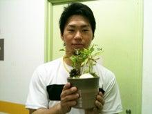 うさぎの音楽談議-趣味は盆栽です