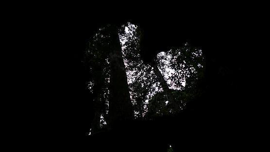 月夜のまほろば