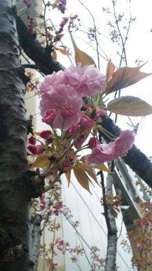 ☆愛☆LOVE YOU♪-100414_172829.jpg