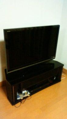 $雑音にしか聴こえない音楽~命を削って聴け!~デス、グラインド、ノイズ、スラッシュ~-液晶テレビ
