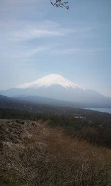 ☆ダンディ DACHS☆-山中湖2010ー6