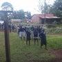 ケニアから現地レポー…