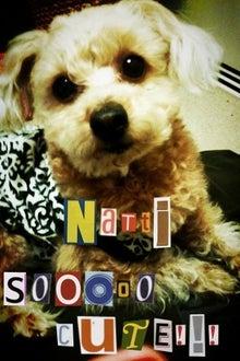 Live!Love!!Laugh!!!-natti