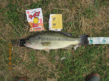 マサの釣りバカ放浪記2-1056-70002.jpg