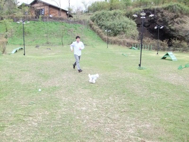 えいとのブログ-熊本